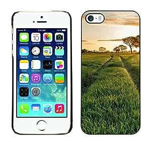 TopCaseStore / la caja del caucho duro de la cubierta de protección de la piel - Nature Beautiful Forrest Green 115 - Apple iPhone 5 / 5S