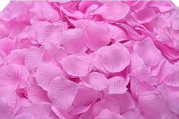 Amazon ocharzy 1000pcs silk rose petals wedding flower ocharzy 1000pcs silk rose petals wedding flower decoration dark pink mightylinksfo