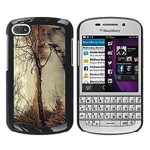 LECELL--Funda protectora / Cubierta / Piel For BlackBerry Q10 -- Árbol del otoño --