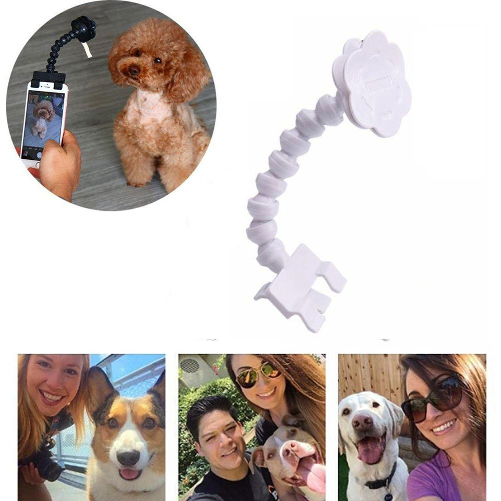 Kobwa Pet Selfie Stick,Portable Dog Cat Take Selfie Easy Way Take Pet Photos Training Photography Toy Phone Attachment