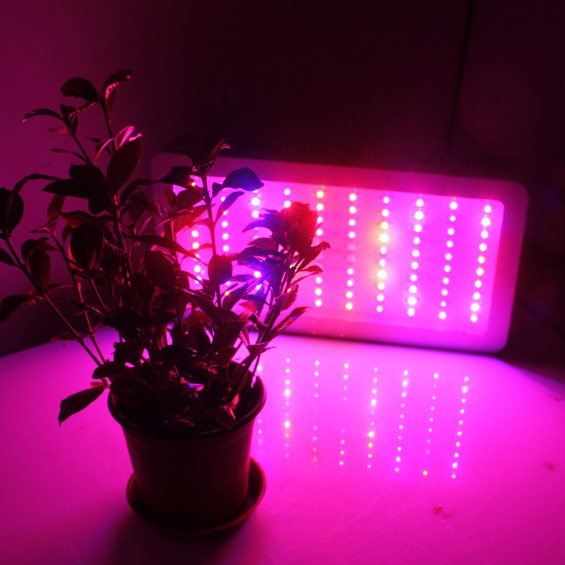 Amazon hhe 300w led grow light full spectrum for indoor plant amazon hhe 300w led grow light full spectrum for indoor plant growingsilver home kitchen parisarafo Image collections