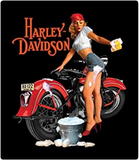 product image for Harley-Davidson Wash Babe Tin Metal Sign, 13 W x 15 H Inch 2010371