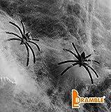 BRAMBLE Halloween Dekoration - 10 Spinnen und 65g weiße Spinnennetz Bahnen - 1 Paket