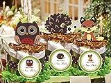 Forest Woodland Owl Hedgehog Fox Baby Shower Mini Diaper Cakes Centerpiece - Handmade By LMK Gifts