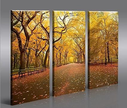 Central Park 3p Quadri moderni - pronti da appendere - Fotografia ...
