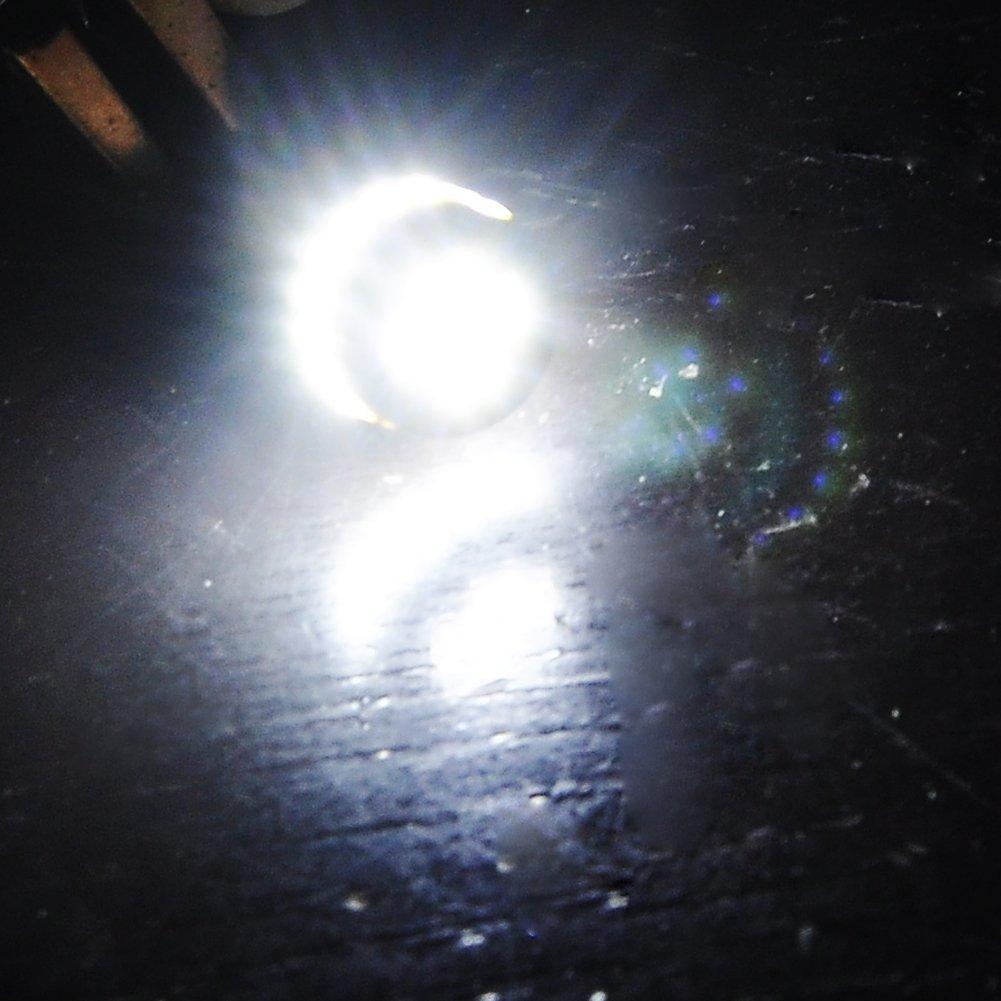 2 luces Canbus LED W5W T10 24 3014, para Mercedes Benz, luz de estacionamiento, luz de posición, blanco xenón [Clase de eficiencia energética A++] (2): ...