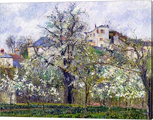 The Vegetable Garden with Trees in Blossom, Spring, Pontoise, 1877 by Camille Pissarro Canvas Art Wall Picture, Gallery Wrap, 20 x 16 inches Camille Spring