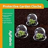 Mr.Garden Standard Plastic Protective Garden Cloche, Plant Bell Cover, Plant Protector Cover for season extention with Ground Securing Pegs (5, Dia8''xH6.5'')
