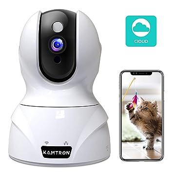 Amazon.com: KAMTRON cámara HD de seguridad IP ...