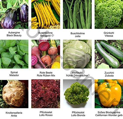 Samen - Saatgutsortiment - Set - Mix - Mischung - kleiner Gemüsegarten 2 - 12 Sorten - 975 Samen
