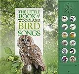 bird calls  hear and there books  frank gallo  lohstoeter Male Cedar Waxwing Song Bird Male Cedar Waxwing Song Bird