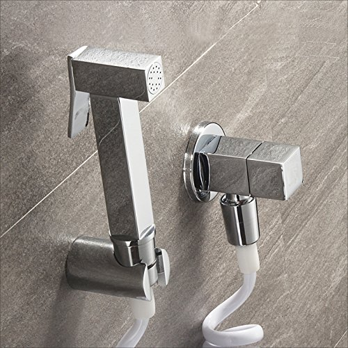 Sprinkle Wall Mount Pull out Bidet Faucet Chrome Single Handle One (Steel Round Wall Water Fountain)