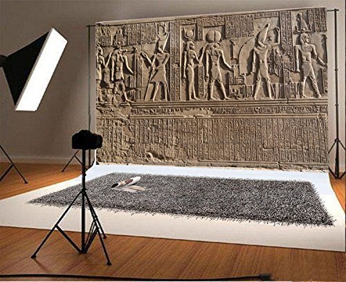 - Laeacco 7x5ft Vinyl Photography Background Ancient Egypt Wall Stone Carving Decorated Stone Hieroglyphics Egyptian Gods Engraved Sobek KOM Ombo Island Figures Children Kids Art Photos Video Studio
