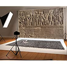 Laeacco 7x5FT Vinyl Photography Background Ancient Egypt Wall Stone Carving Decorated Stone Hieroglyphics Egyptian Gods Engraved Sobek Kom Ombo Island Figures Children Kids Art Photos Video Studio
