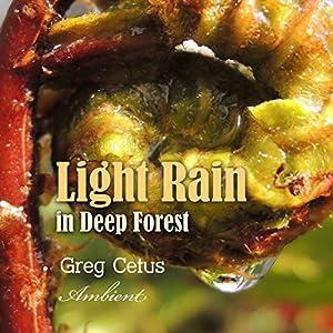 Light Rain in Deep Forest Performance