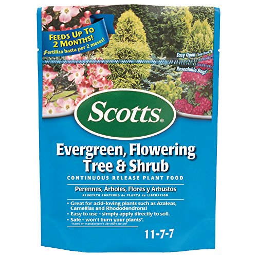 nuous Release Evergreen Flowering Tree and Shrub Fertilizer (6 Pack), 3 lb ()