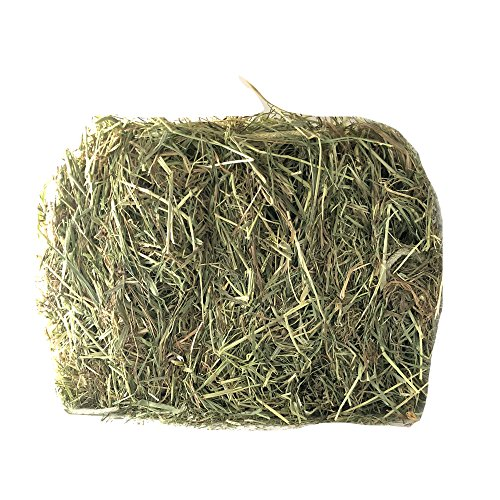 Hollywood Rabbits Hay - 2 Lb. Block | Natural Small Animal & Rabbit Food | Leafy With Soft Stem & Flower Heads