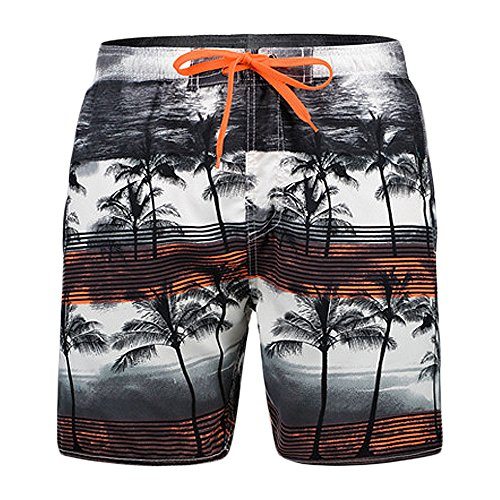 MAGE MALE Mens Beach Shorts Comfortable Fit Quick Dry Shorts Coconut Tree Print Swimming Trunks ()