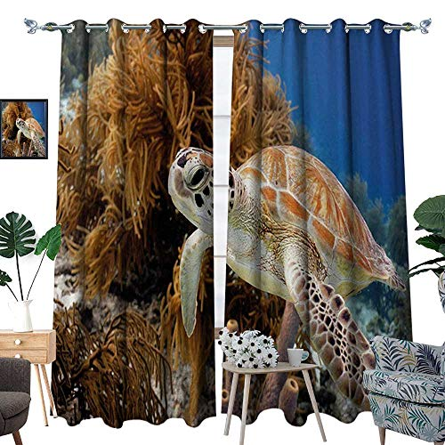 RenteriaDecor Turtle Blackout Window Curtain Coral Reef and Sea Turtle Close Up Photo Bonaire Island Waters Maritime Customized Curtains W120 x L96 Pale Coffee Brown Blue