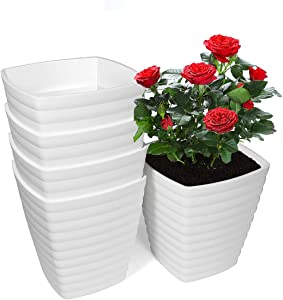 Plastic Plant Pots, 6 inch Plastic Planters Indoor with Drainage Hole and Stoppers, Tall Flower Pots for Plants, Aloe Vera, Peace Lilly, Herb, Violets, Home Office Garden Pots, White, Set of 5