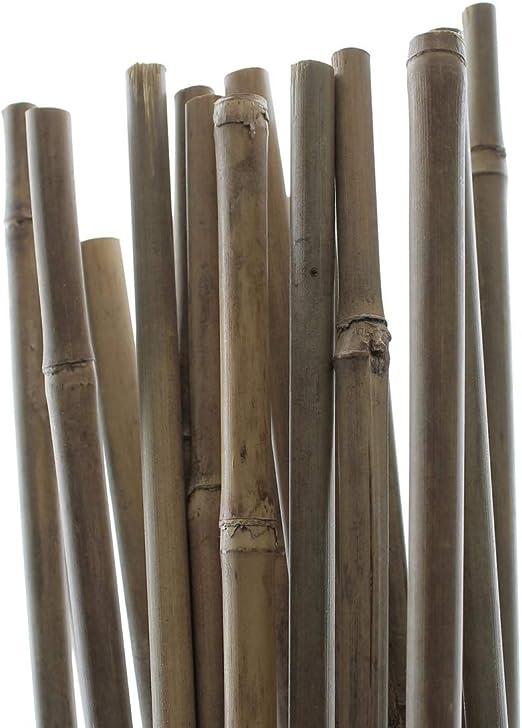 PLANT IT 10-480-062 - Estacas de bambú de 150 cm para sujetar ...