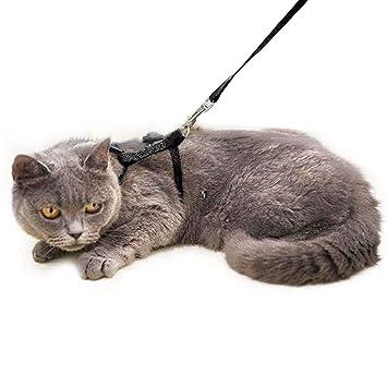 Amazon.com: Sadocom - Arnés para gatos, correa de nailon ...