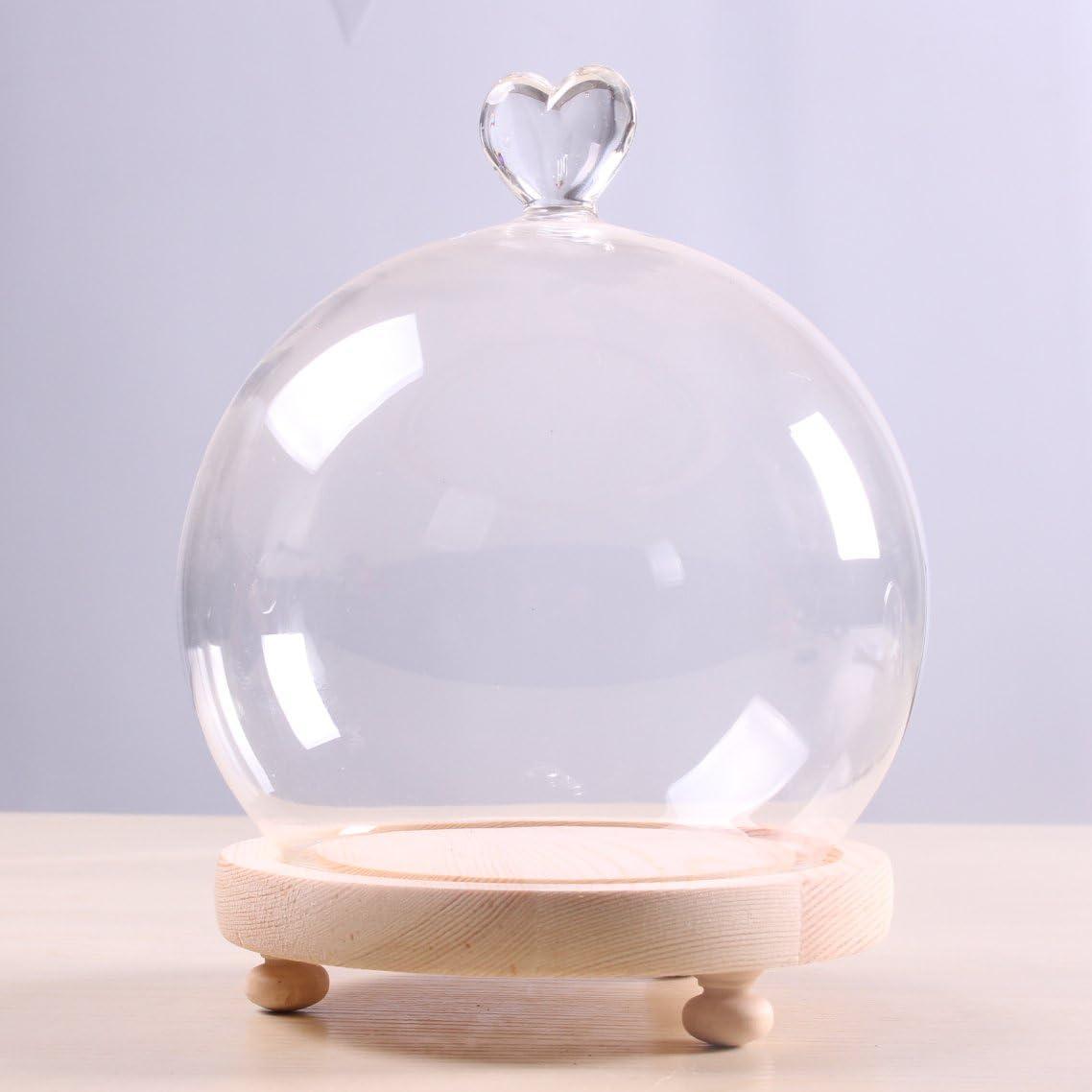 Siyaglass /Écran Cloche en Verre Globe Clair D/ôme Cloche avec C/œur Poign/ée en Bois Base Dia 15/cm