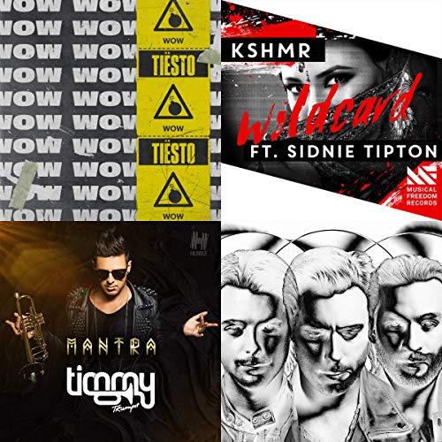 Best of Prime: Big Room EDM (David Guetta Best Hits)
