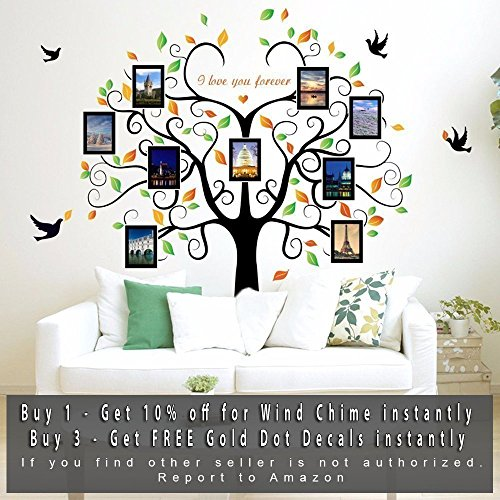 Family Tree Wall Decal 9 Large Photo Pictures Frames. Peel and Stick Wall Decal, Best Removable Wall Decals For Living Room, Bedroom, Kids Rooms Mural Decor - Photo Gallery Frame Sticker By GoGoDecal (Decal Photo)