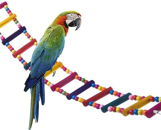 ZYZ Pájaro Madera Arco Iris Juguete Escalera Paso Loro Puente Columpio Jaula de pájaros Accesorios Decorativo Flexible Periquito Pequeño Guacamayo Pájaro de Entrenamiento: Amazon.es: Hogar
