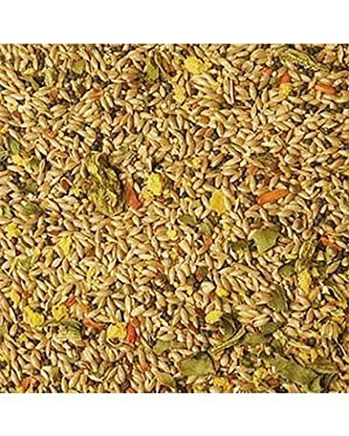 Volkman Avian Science Super Canary Bird Seed 4 Lb - Nyjer Seed