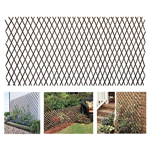 GLANT Lattice Fence Willow Expandable Plant Climbing Lattices Trellis Fence,Open Screen Willow Fencing,Willow Expandable Trellis Fence -