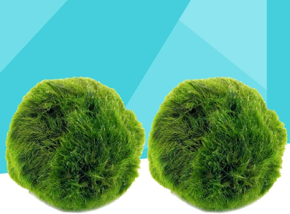 VILLCASE 2 Piezas Marimo Moss Ball Mini Purificaci/ón de Agua Algas Decortive Planta Acu/ática Marimo Ball Planta Viva para Acuario Pecera