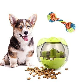 YGZN Pelota de Comida para Mascotas, dispensador de Vaso para Perros y Gatos, alimentador de Comida para Mascotas (Verde): Amazon.es: Productos para ...