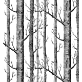 Modern Minimalist Birch Tree Pattern Waterproof Wallpaper Wall Paper Roll for Livingroom Bedroom, 20.8 In32.8 Ft=57 Sq.ft,black&off-white