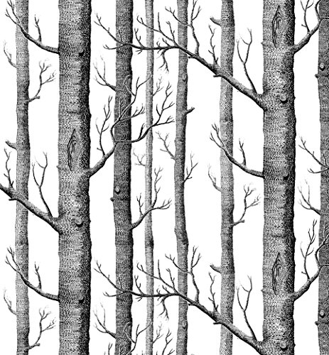 Modern Minimalist Birch Tree Pattern Waterproof Wallpaper Wall Paper Roll for Livingroom Bedroom, 20.8 In32.8 Ft=57 Sq.ft,black&cream-white ()