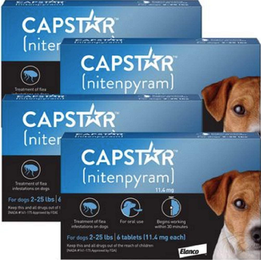 4 PACK CAPSTAR Blue for Dogs o2-25 lbs(24 tablets)