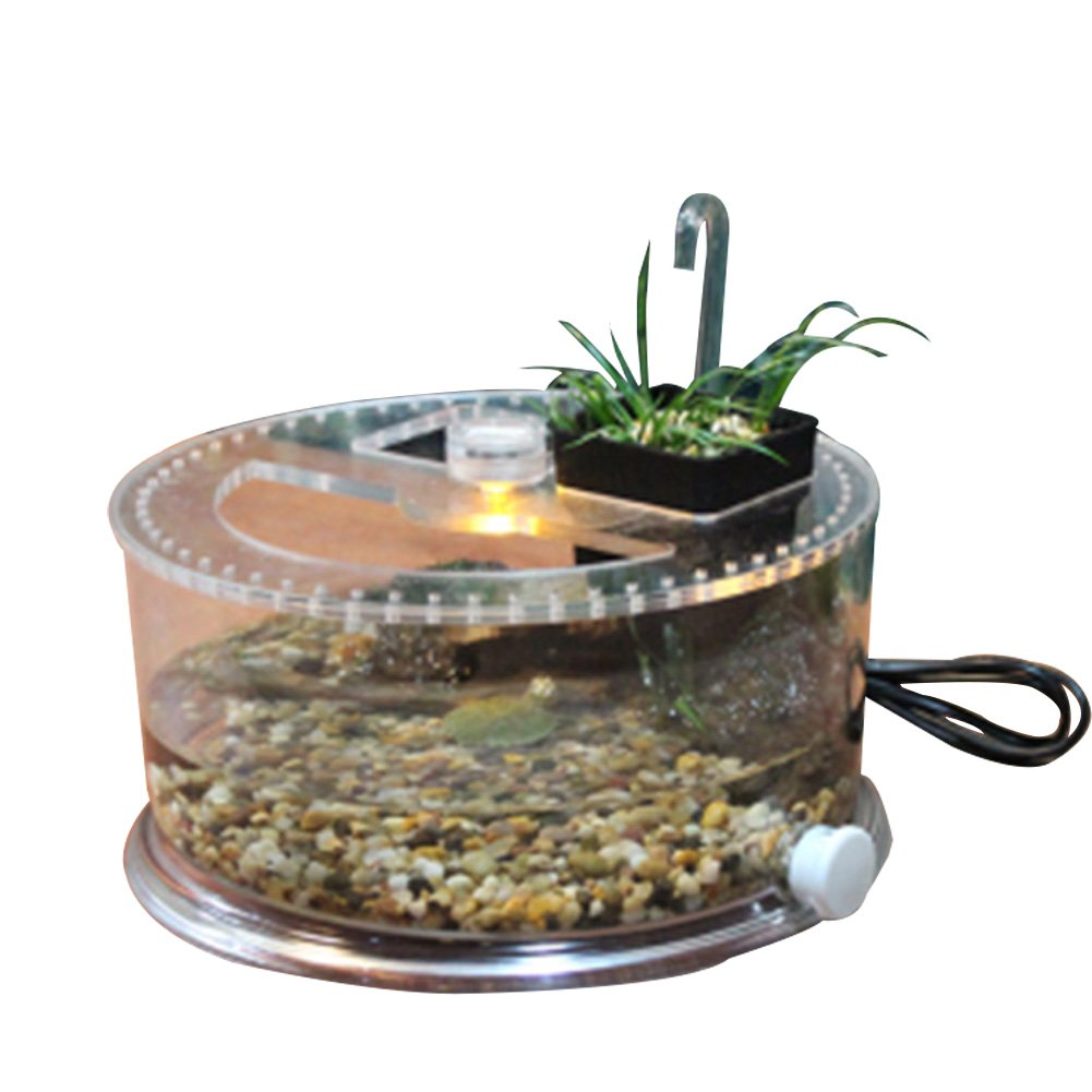 Office table fish tank, suitable for turtle, fish, reptile perfect ecological landscape box (turtle tank)