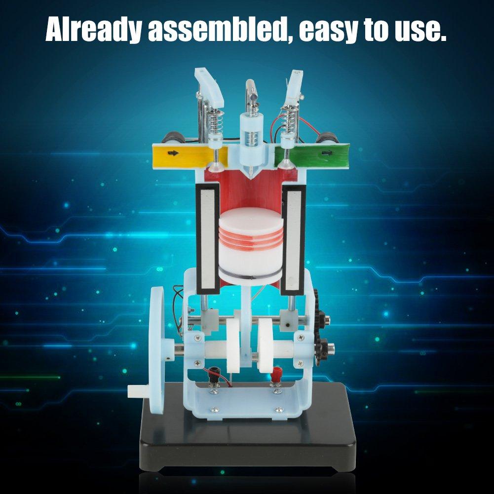 Akozon Modelo del Motor Diesel Combustión Interna de 4 Tiempos Instrumento de Enseñanza del Experimento de la Física: Amazon.es: Industria, ...