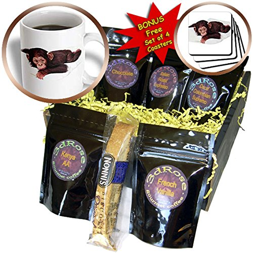 Monkey - Cute Chimpanzee - Coffee Gift Baskets - Coffee Gift Basket (cgb_628_1)