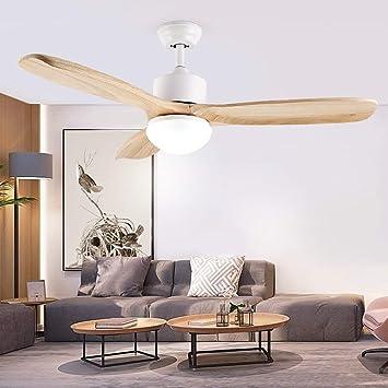 Amazon.com: PLLP Lámpara de techo, luz de techo para el ...