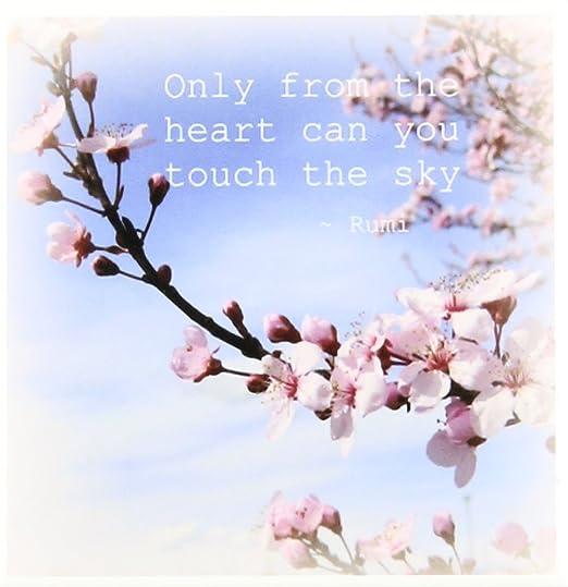 com drose ct inspirational zen cherry blossom