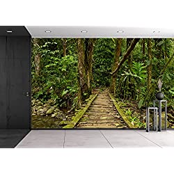 wall26 - Low Angle View of a Wooden Bridge in the Ecuadorian Jungle. - Removable Wall Mural | Self-adhesive Large Wallpaper - 100x144 inches