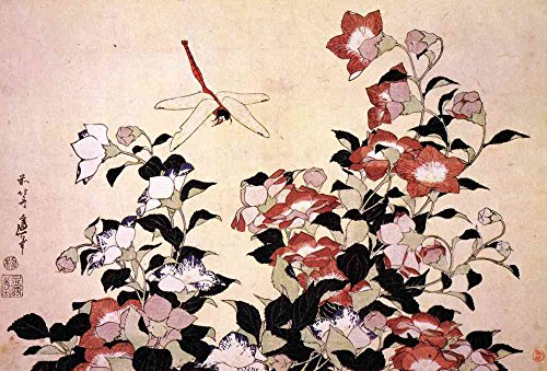 The Museum Outlet - Hokusai - Chinese bell flower and dragon-fly - Canvas Print Online Buy (40 X 50 - Flower Chinese Bell