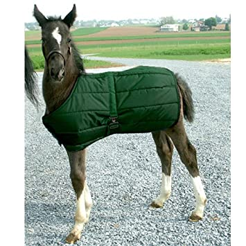 High Spirit Foal Blanket Hunter Green 158000GN