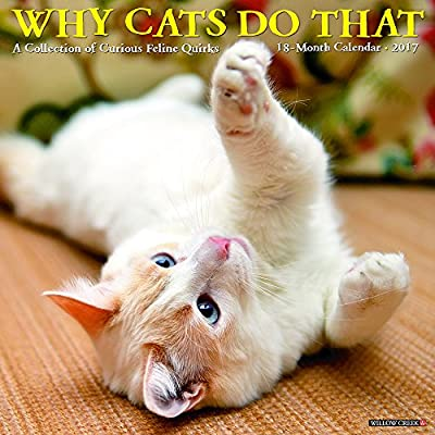 2017 Why Cats Do That Wall Calendar