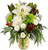 Benchmark Bouquets Holiday Magic, With Vase