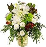 Kyпить Benchmark Bouquets Holiday Magic, With Vase на Amazon.com