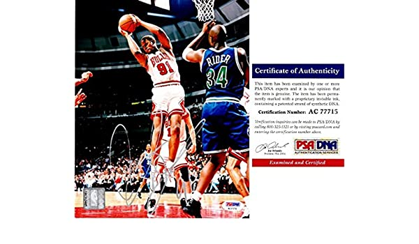25b494a75 Dennis Rodman Signed - Autographed Chicago Bulls 8x10 inch Photo - PSA DNA  Certificate of Authenticity (COA) at Amazon s Sports Collectibles Store