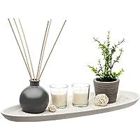Bandeja decoratif jardín Zen 14Pieces difusor Perfume planta